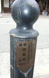 200803295