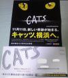 Cats_dm