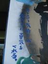 Arashi201001168