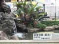 Atami20100315_1