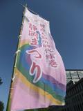2010shizuokamaturi1
