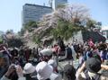 2010shizuokamaturi4